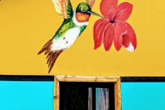 coco-bongo-ecuador-artist007